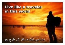 live-life-like-a-traveler
